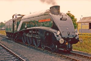 Portrait of a streamliner by Brit31