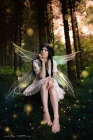 Yui - Fairy Forest by RomaiLee