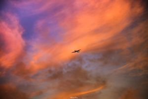 Flying with the dying Sun by Ironise