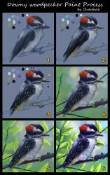 Downy Woodpecker Paint Process by charfade