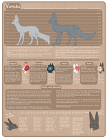 Vonsku species sheet by D-eer