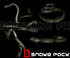 3D Snake Stock PACK by PropandStock
