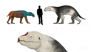 All todays, Elephant seal the titan carnivora by Dragonthunders
