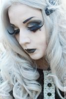 Miss Silver Fox IV by MADmoiselleMeli