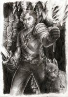 Fable 2 Hero by Astaldour