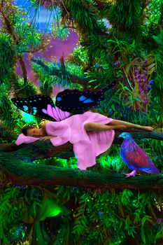 In The Jungle The Mighty Jungle The Faerie Sleeps  by ilovemyhusky