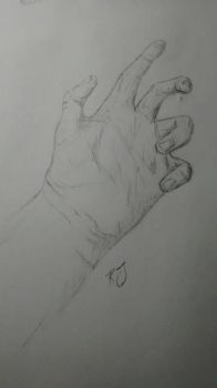 Drawing of my hand by Thudd224
