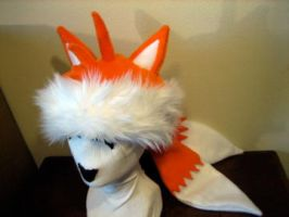 TAILS ''Coon Skin'' Cap by tacksidermia
