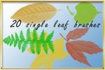 Single leaf set bruches by AnastasieLys