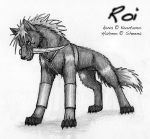 Alpha Roi by Kuuda