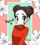 Pucca by Paulinaapc