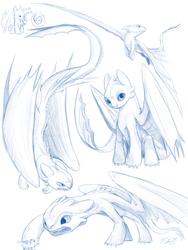 Toothless Sketches by Tsitra360