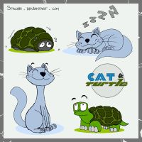 Cat and Turtle by Stachir