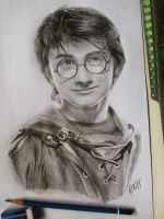 Harry Potter by CliffaxBeron