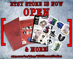 Etsy store is now OPEN by Temrin