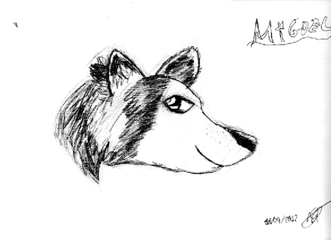 Simple Wolf... by S0rax