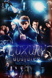 Harry Potter - Fantastic Beasts and Where to Find by Pandora-Poochyena
