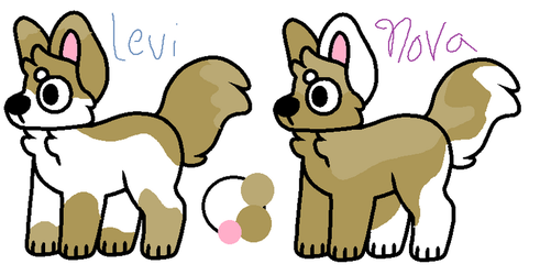 GB   Toby's sibling adopt {CLOSED} by emmbug124