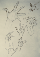 Hands [study] by TheFreakyRaccoon