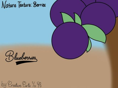 Blueberries by CreativeArts723