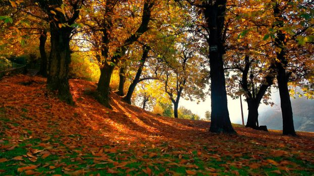 The Autumn Hills by persianpop