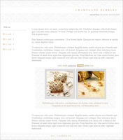 Champagne Bubbles Journal CSS by Gasara