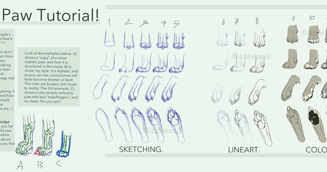 Canine Paw Tutorial by Maditium