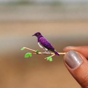 Violet-backed Starling - Paper cut birds by NVillustration