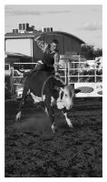 BW Bull Rider 2 by Dyer-Consequences