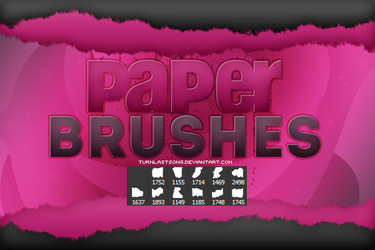 +PAPER BRUSHES by turnlastsong