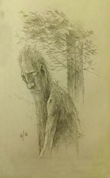 Ent by TurnerMohan