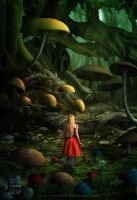 Mushroom forest by FeriAnimations