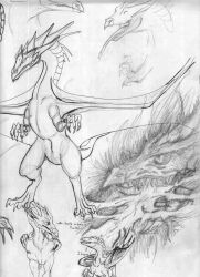 More sketches by Brafisra