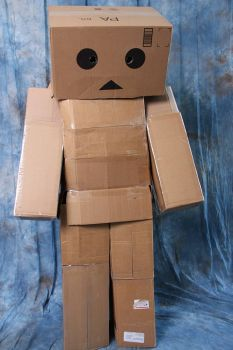 Ohayocon 2013: Sad Danbo by anarchymarie