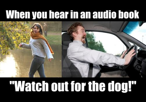Watch out for the dog