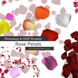 Rose Petal Photoshop and GIMP Brushes by redheadstock