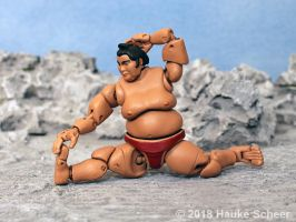 3D printed Sumo action figure pose D by hauke3000