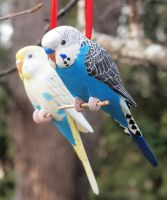 Budgie Carvings by greencheek