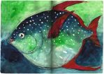 Il pesce re by andreuccettiart