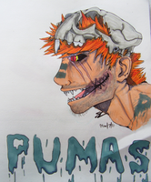 Pumas Copic drawing by SamColwell