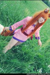Spice and Wolf 6 by Eletiel