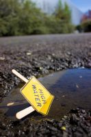 High Water Puddle by thedustyphoenix