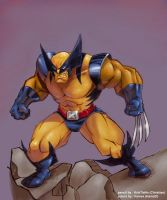 Coloring-Wolverine by hamex