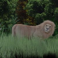 Lion2 by fractal2cry
