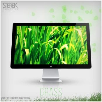 Grass Wallpaper by SterekCreations
