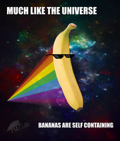 Much Like The Universe Bananas Are Self Containing by HatMan117
