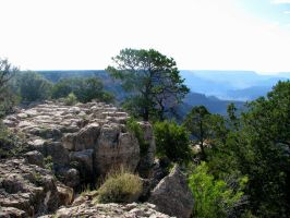 Grand Canyon National Park 9 by ShadowsStocks