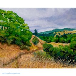 Marin Foothills On A Cloudy Day by davidhardesty