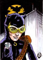 Catwoman Sketch Card no1 by Barnlord