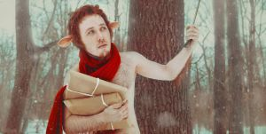 Mr. Tumnus (The Chronicles of Narnia) by KatyaWarped